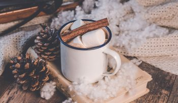 Saving for the Holidays with marshmallows and cinnamon on top of book and pine cones.